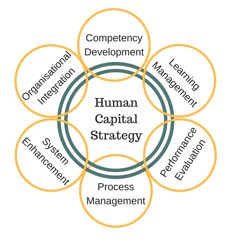 a course on human capital development This course examines the primary role of human resources development (hrd)  in the  group dynamics and the trends in hrd, such as human performance.